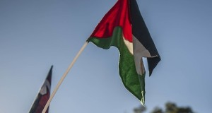 A Palestinian flag flies at a pro-Palestinian rally in Gauteng. Photo by Ihsaan Haffejee