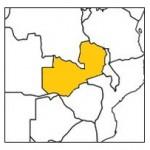 KvS zambia