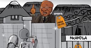 Nkandla TAC [cartoon] [slider]