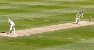 Cricket pitch [wikimedia commons]