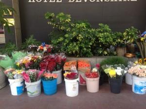 florist lady