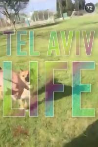 Tel Aviv Snapchat 4