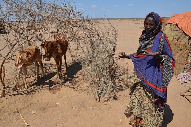 Ethiopia drought Flickr