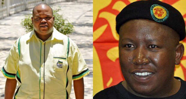 Maine Malema collage ANCYL
