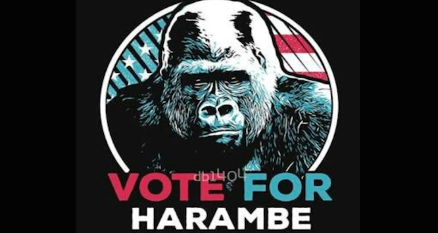 Vote For Harambe, 2016 US Elections