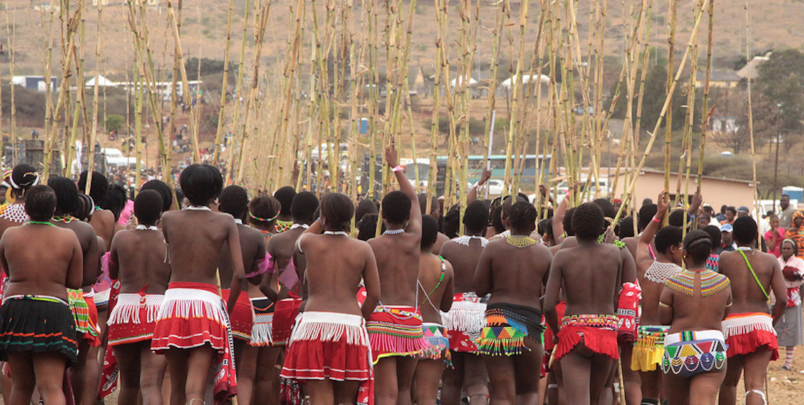 Reed dance a front for corrupt tendencies - The Daily Vox
